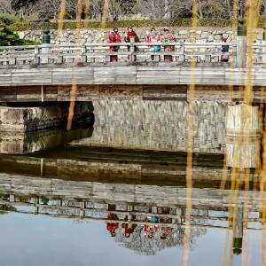 姫路城と水面に映る着物女子