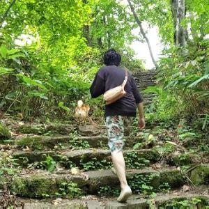 犬と泊まれる温泉宿 定山渓温泉の森の謌に行ってきました!