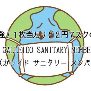 コスパ最強!1枚当たり22円マスクのサブスクGALLEIDO SANITARY MEMBER(ガレイド サニタリー メンバー)