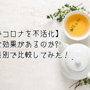 【緑茶でコロナを不活化】本当に効果があるのか都道府県別で比較してみた!
