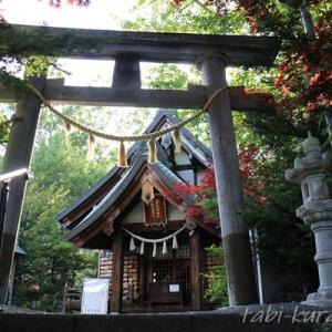【札幌近郊・低山登山】標高89mの天神山と、天神山緑地の散策