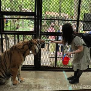 ノースサファリサッポロ|全てが自己責任の、ちょっぴり危険な動物園