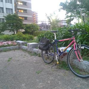ニシキ エボリューションEG で堺まで走りにいった。走りはかなり快調、でもなんか異音が...(^_^;)