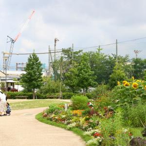 京都市電 狭軌1型N27号・広軌1型29号 梅小路公園