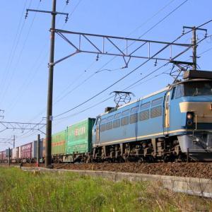 JR貨物 EF66 52 東海道本線