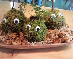苔玉 作り方