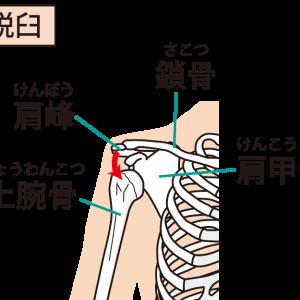 肩関節亜脱臼対策 その2