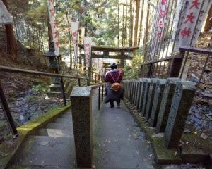 犬と一緒に行く秋の世界遺産吉野山金剛峯寺と大和本舗等の旅(後半)
