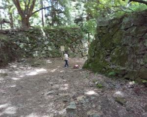 犬と一緒に行く奈良県高市郡高取町にある高取城跡への旅(その2)高取城跡経由観光駐車場