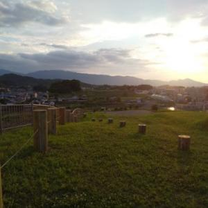 犬と一緒に行く夕涼み、奈良県橿原市植山古墳公園への旅