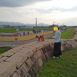 犬と一緒に行くミステリースポット奈良版小さな万里の長城