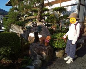 犬と一緒に行く倉敷美観地区 備中松山城 蒜山高原の旅①やさしさの宿竹亭