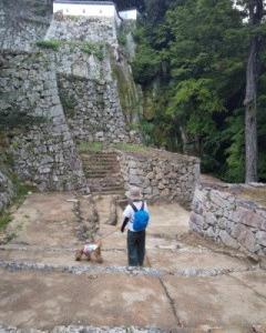 犬と一緒に行く備中松山城 蒜山高原の旅 倉敷美観地区 ②備中松山城