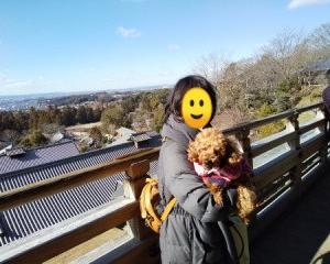 犬と一緒に行く奈良公園、奈良県東大寺、二月堂の旅②
