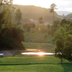 季節の風景 奈良県の明日香村キトラ古墳周辺地区で出会えた飛鳥の虹と光る田んぼ