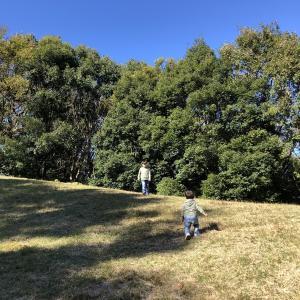 週末はいつも通り公園三昧〜男兄弟体力&食欲恐ろしい〜