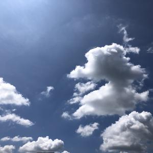 8月に入ってプール開き★やっと夏らしい気候がやってきた〜