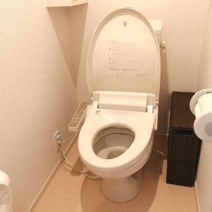トイレ掃除が苦手な理由を考えてみた