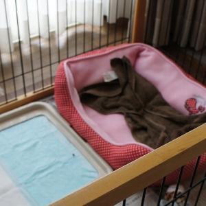 ベッドカバーを縫いました