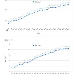 【双子妊娠】体重グラフ&腹囲グラフ
