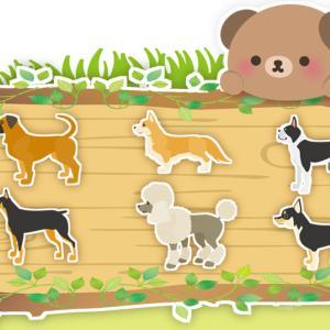 犬の種類はどれぐらいの数があるの?画像でみる10のグループ