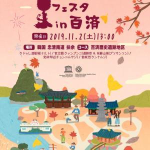 曹渓寺で菊のお祭りが開催中