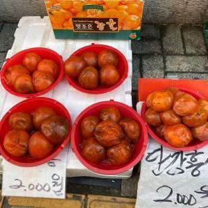 韓国の人は、熟しすぎた柿が好きらしい