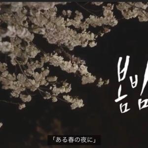 チョンへイン『春の夜』に、キュ~ン・:*:・(*/////∇/////*)・:*:・