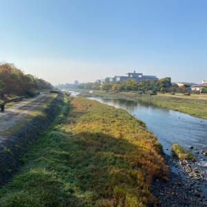 ○○年ぶりに通学路だった京都御所を歩いてきました