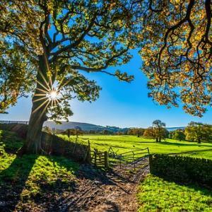 【目覚め】冬至では覚醒ゲートを進める:今日という次元を抜けて更なる次元「明日」へ移行創造する