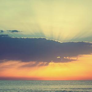 【目覚め】現実を丁寧に生き周波数に振り回され思い煩う世界から解脱する:豊かさと優雅さの中で生きる