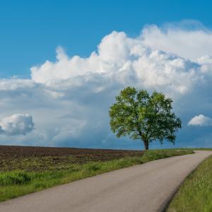 【目覚め】「回避」と「対峙」という各々の最善の道へ創造が向かう:「霊性進化」「狭間からの解脱」へ