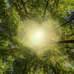 【目覚め】「楽しむため生まれ降りた」という観点の「陰陽一対」を知る:体験創造と霊性進化は協働する