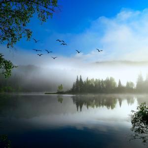 【目覚め】「最優先」は出来事が起こったその瞬間に既に決まっている:判定を使う限り自我の観点にあり