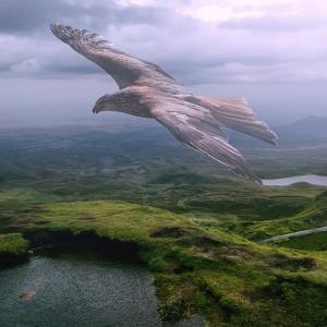 【目覚め】覚醒的観点の「全力で行動する」と「自我の空回り」を見極める:「出来ない」の楽しさを知る