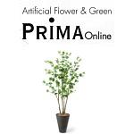 PRIMA Online(プリマオンライン)割引クーポン情報まとめ!