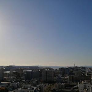 今朝の不労所得編 11/21 マイナス¥8,336