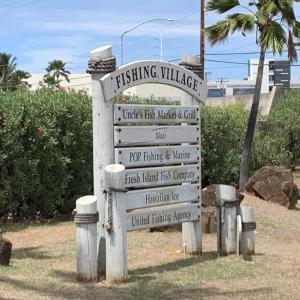 ハワイの旅⑳