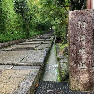 202010 京都台風の旅路 2日目⑪