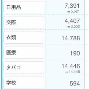 11月家計簿の途中報告