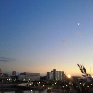 夕暮れの月の1枚