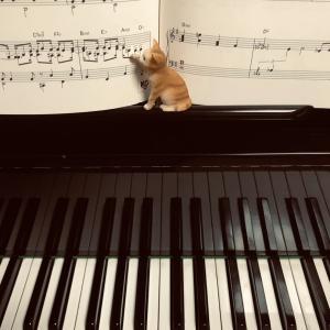 国分弘子さんの「ピアノ一丁!」で癒される時間