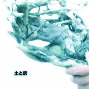 HARRY肺がん発表
