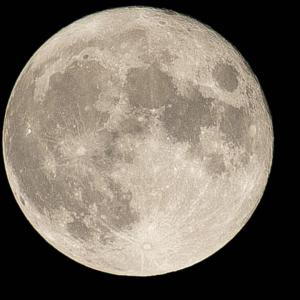 お月様きれいだったね