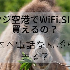 サウジアラビア空港でWiFi・SIMは購入可能なの?|日本へ電話は何分話せる?