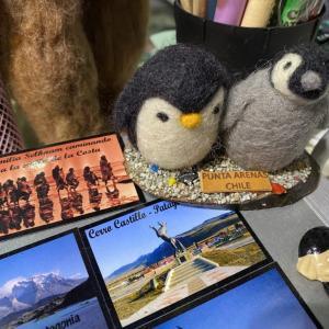 【チリ編④】チリの南端プンタアレーナスの街はペンギン推し推しのお土産天国!