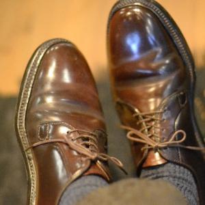 雑記:三連休最終日、靴と餃子