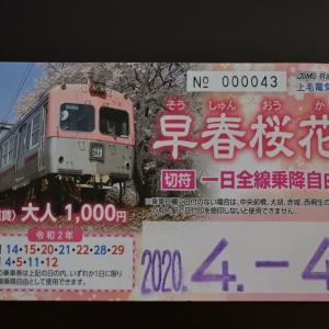 【上毛電鉄】青春18きっぷで行く春のギリギリ鉄道旅