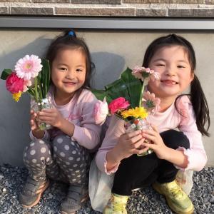 夏休み花育🌸夏の花「おうちdeはないく」