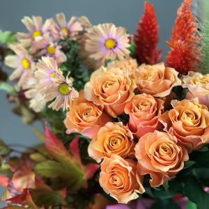 秋の花たち🌸コスモスのオレンジセラピー